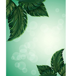 A special paper with big pointed leaves vector image