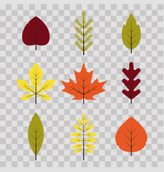 autumn different leaves set in flat style red vector image