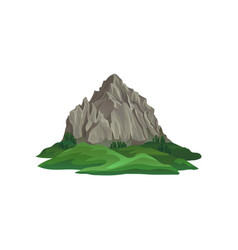 big rocky mountain surrounded with green plants vector image