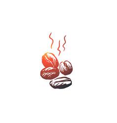 coffee beans drink espresso grain concept vector image
