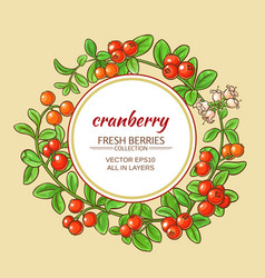 Cranberry frame vector