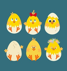 Easter Chicken Icon vector