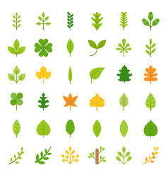 leaves and branch icon set flat design vector image