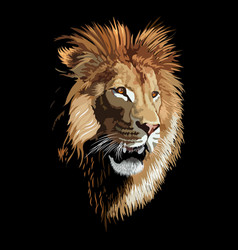 lion poster vector image
