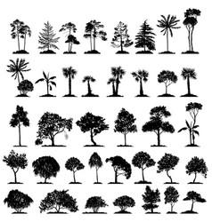 Set deciduous trees vector