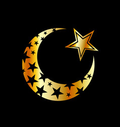 the islamic star vector image
