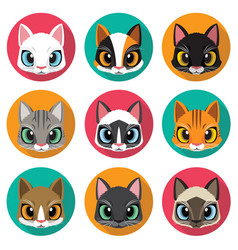 cute cats collection vector image vector image