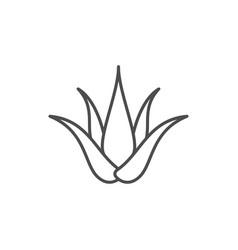 Aloe vera line outline icon vector
