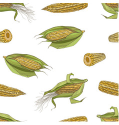 Elegant seamless pattern with realistic cobs of vector