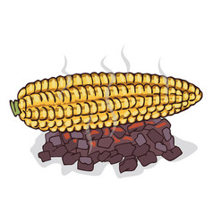 Isolate grilled corn ears fruit vector