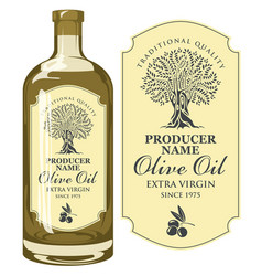 Label for olive oil with an olive tree vector