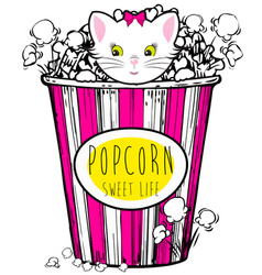 Popcorn box with cute cat vector