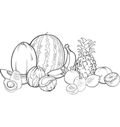 tropical fruits for coloring book vector image