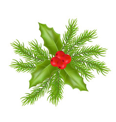 christmas composition with holly green leaves and vector image