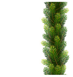 christmas seamless borders from fir tree branches vector image