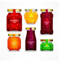 Homemade fruit jam jars vector