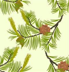 Seamless texture blooming pine tree and pine cones vector