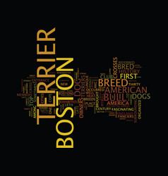 the boston terrier text background word cloud vector image