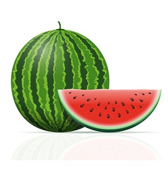watermelon 03 vector image