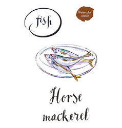 three horse mackerels on a white plate vector image vector image