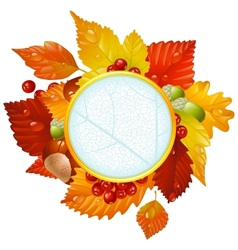 autumnal round frame with fall leaf vector image