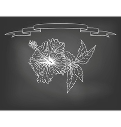Card with hibiscus flower on chalkboard vector