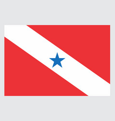 flag para state vector image