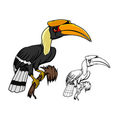 rhinoceros hornbill tropical kalao bird vector image