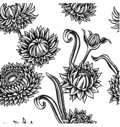 seamless pattern with black and white helichrysum vector image