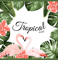 tropical event invitation card template vector image