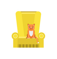 cute red cat sitting on an yellow armchair home vector image