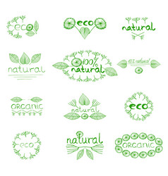 organic eco natural badge vector image