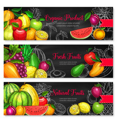 Banners for tropical exotic fruits market vector