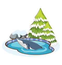 Blue whale in pond vector