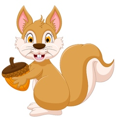 cute squirrel cartoon holding hazelnut vector image