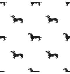 Dachshund icon in black style for web vector