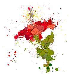 Drawing hibiscus flower vector