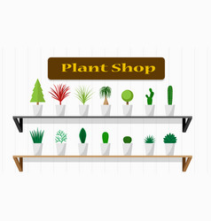 Interiors plant shop with green plant on shelf vector
