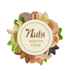Nuts Healthy Food Concept in Flat Design vector image