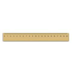 realistic wooden measuring ruler vector image