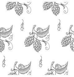 Seamless pattern with sprig of hops vector
