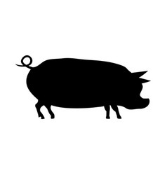 silhouette of a pig vector image