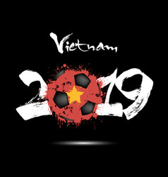 2019 new year and soccer ball as flag vietnam vector image