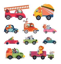 Animal car drivers cartoon kids vehicle funny vector