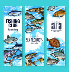 Banners set of fish catch for fishing club vector