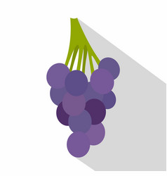 Bunch of blue grapes icon flat style vector