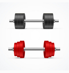 Realistic detailed 3d different dumbbell set vector