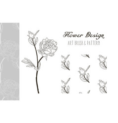 peony flower design art brush and pattern vector image vector image