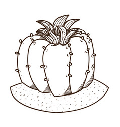 blooming cactus outline drawing for coloring vector image