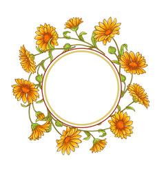 calendula flower frame vector image
